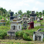 Private (family) cemetaries are usually found in the middle of rice paddies. This is one of the larger ones I saw.